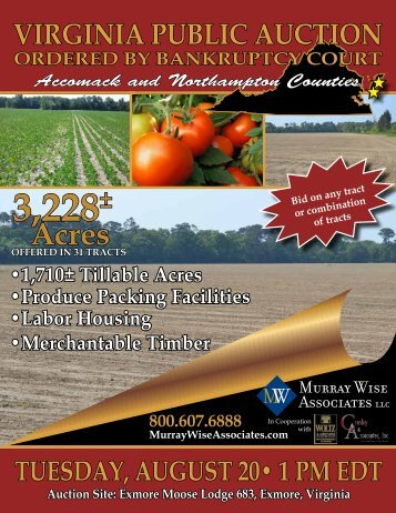 Download Auction Brochure - Murray Wise Associates