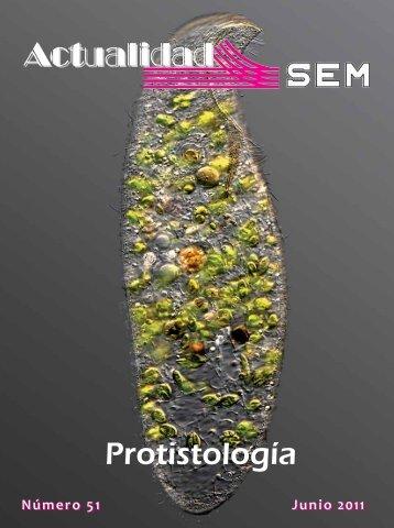01_SEM-51_Interior_Maquetación 1 - Sociedad Española de ...