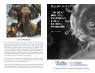 download - Institute for Global Leadership