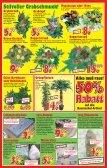 500-g - Schaaf Kalkuliert Onlineshop - Page 7
