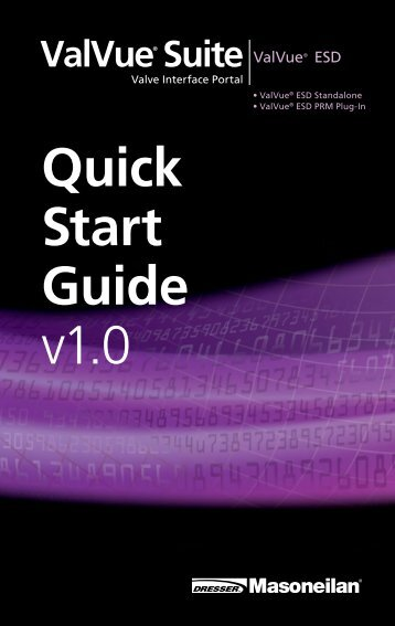 Valvue Esd Quick start guide.pdf