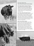 AMF-NHF - Angus Journal - Page 5