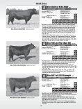 AMF-NHF - Angus Journal - Page 6