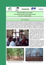 BOLETÍN FORESTAL DE YUNGAS Del Programa de Apoyo al Buen ...