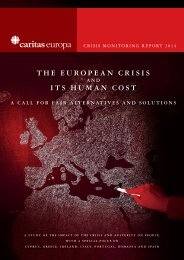 2014-03-27 -  Caritas Crisis Report 2013 - published version - FINAL