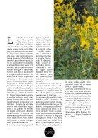 Topinambur ai funghi - Page 2