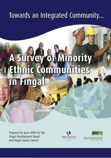 A Survey of Minority Ethnic Communities in Fingal