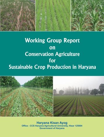 Working Group Report on Conservation Agriculture for Sustainable ...
