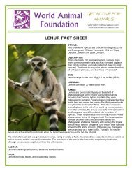 LEMUR FACT SHEET - World Animal Foundation