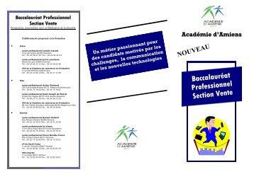 Baccalauréat Professionnel Section Vente - Economie et Gestion au ...