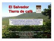 El Salvador, tierra de café - PROCAFÉ