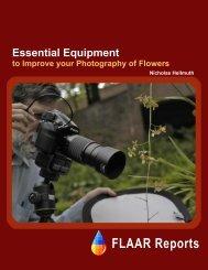 Westcott_flowers_ref.. - Digital photography camera reviews