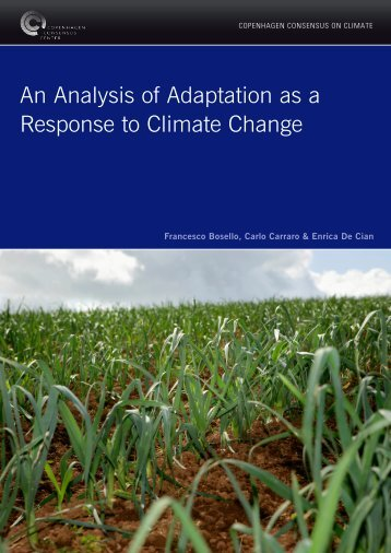 An Analysis of Adaptation as a Response to Climate Change