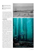 Under Busselton Jetty - Department of Environment and Conservation - Page 3