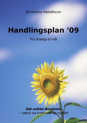 Handlingsplanen for 2009 - Bornholms Regionskommune