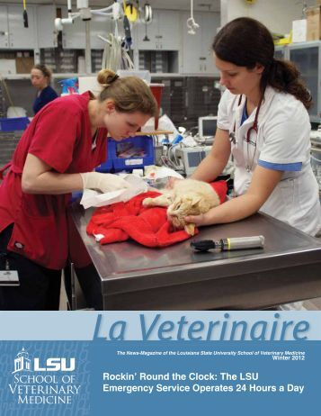 Rockin' Round the Clock - School of Veterinary Medicine - Louisiana ...