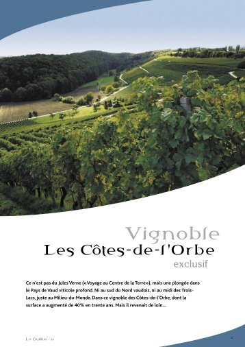 Vignoble - STLDESIGN