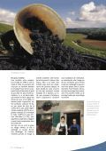 Vignoble - STLDESIGN - Page 3