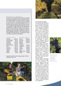Vignoble - STLDESIGN - Page 7
