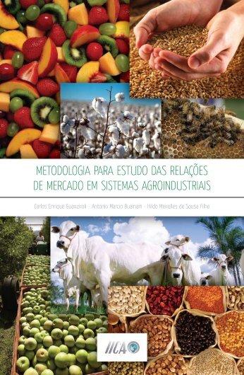 metodologia para estudo das relacoes de mercado em sistemas ...