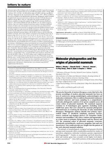 Molecular phylogenetics and the origins of placental mammals