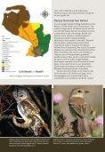advert cotinga 29 - FAUNA Paraguay - Page 4