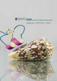 annual report 2009 - Institute for Molecular Bioscience - University of ...