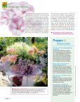 COMPO Magazin - Schneckenprofi - Seite 6