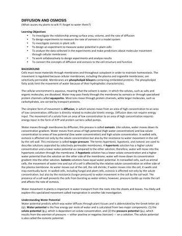 essay for teachers tagalog