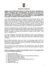 provincia di mantova verbale della prima riunione del 21 giugno ...