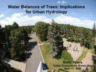View Presentation - Water Resources Center - University of Minnesota