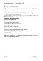 Skolepraktik opgave – Udvendigt træværk Tradium Randers ...