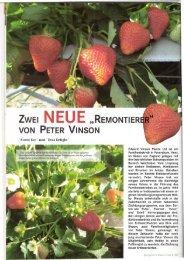 spargel-erdbeer vinson-eve