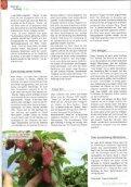 spargel-erdbeer vinson-eve - Seite 3