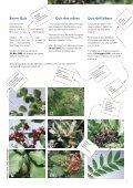 Newsletter 1-2006 - Natur & Wirtschaft - Seite 7