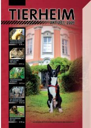 download Tierheim Aktuell 2009 PDF (5 MB)