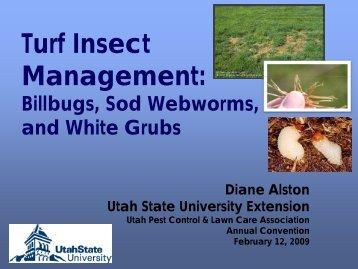 T rf Insect Turf Insect Management: - Utah Pests - Utah State University