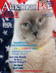 THE RAINBOW BRIDGE - American Pet Magazine ...