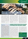 JORNAL DO SERVIDOR - Page 3
