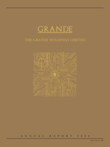 notes to financial statements - the grande holdings limited