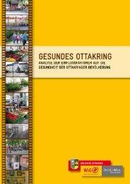 Gesundes Ottakring Analysebericht - Wiener Gesundheitsförderung