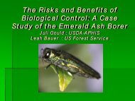 A Case Study of the Emerald Ash Borer