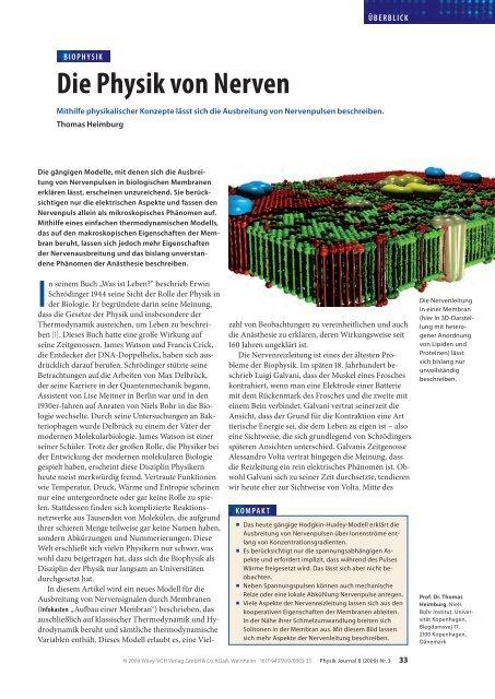 Die Physik von Nerven - Membrane