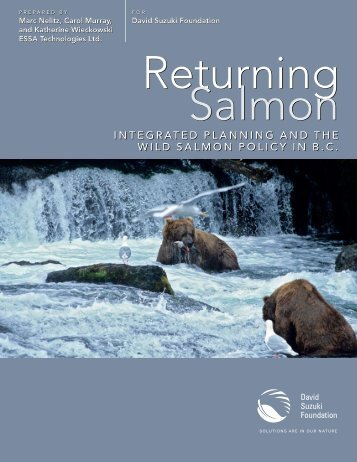 a discussion on salmon and hatcheries