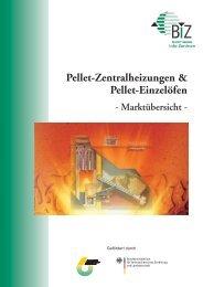 Pellet Zentralheizungen Pellet Einzelöfen - Der Schornsteinfeger
