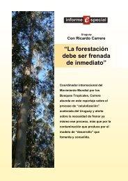 """""""La forestación debe ser frenada de inmediato"""" - Rel-UITA"""