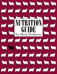 Nutrition Guide for Sheep Producers