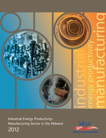 Industrial Energy Productivity: Manufacturing Sector in the Midwest