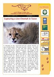 Capturing a Live Cheetah in Turan - Conservation of the Asiatic ...