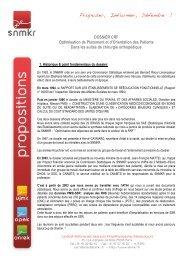 DOSSIER CRF Optimisation de Placement et d'Orientation ... - snmkr